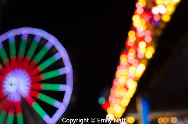 Tennessee State Fair, Ferris Wheel at Night (Emily Naff)