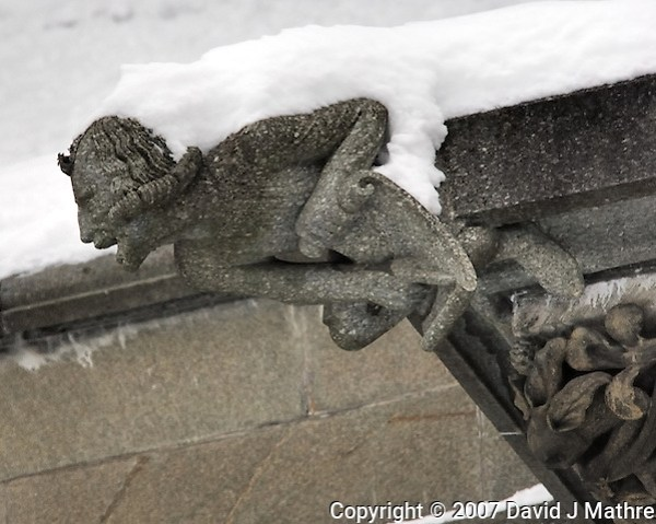 Gargoyles Outside Nidaros Cathedral in Trondheim, Norway. Image taken with a Nikon D2xs and 80-400 mm VR lens (ISO 400, 300 mm, f/5.6, 1/160 sec) (David J Mathre)