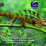 Call for Entries: Wildlife Through the Lens