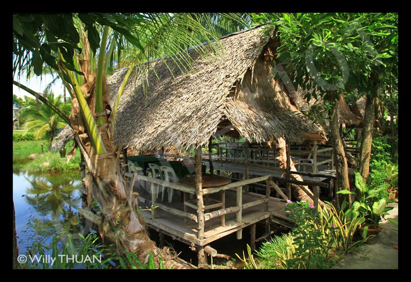 phuket-chayo-seafood