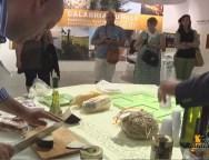 Expo Milano, chiusa con successo la settimana dedicata alla Calabria rurale. VIDEO
