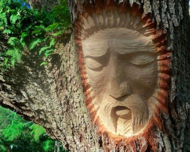 Tree-Spirit-Carvings-4