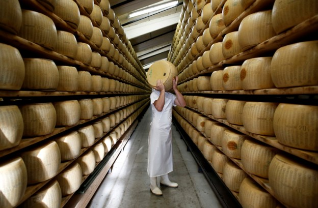 Parmigiano Reggiano cheese production, Fidenza, 2014.