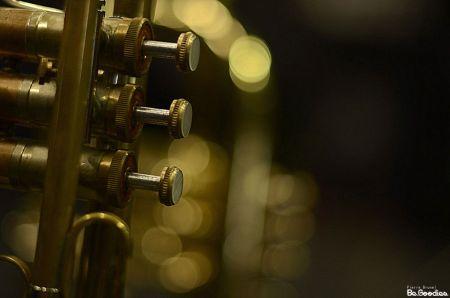black_trumpet_2014_000-web