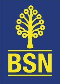 bsn_logo_02