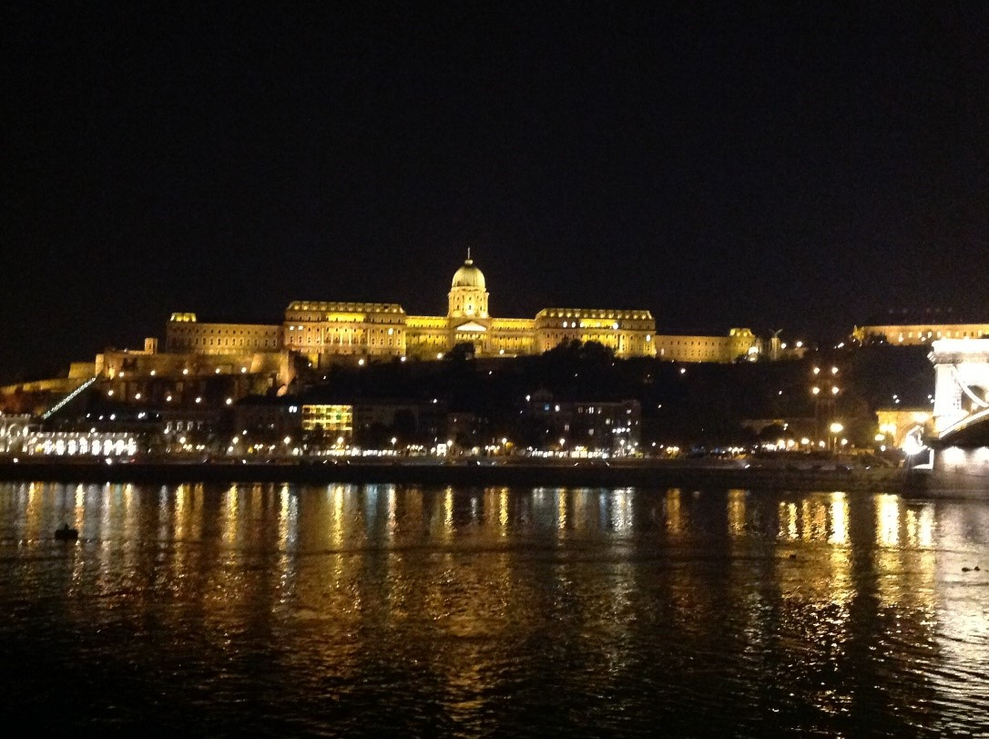 2015 International Primary Immunodeficiency Congress in Budapest