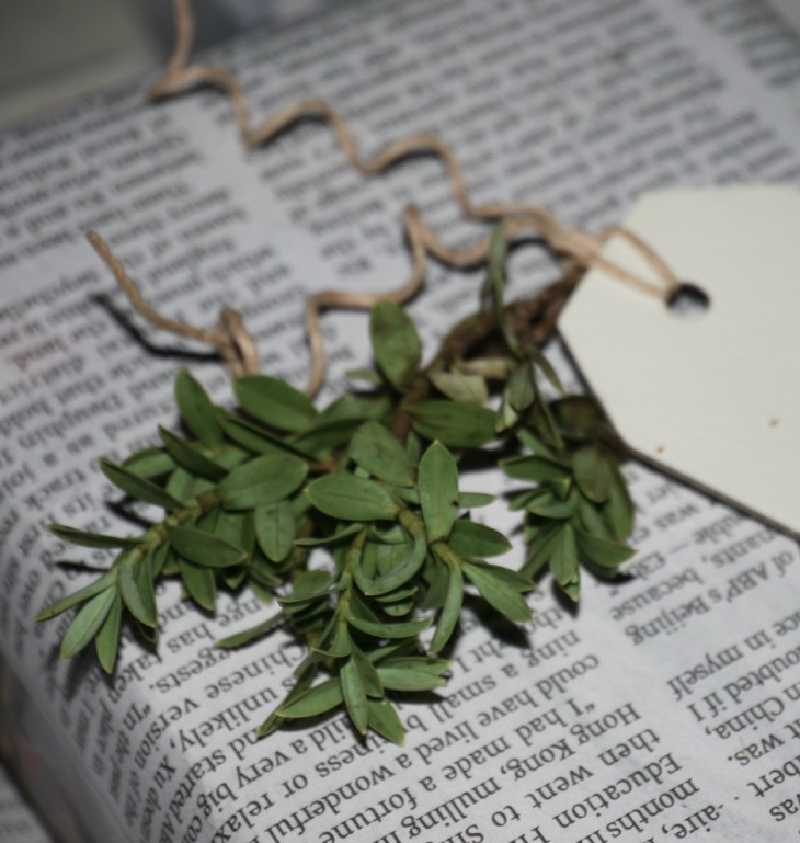 Foliage gift tag by Pippa Jameson Interiors