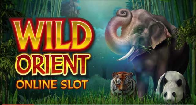 Wild Orient Review: Deep in the Asian Jungle