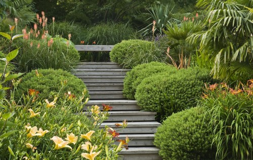 acres wild form and fliage garden wooden steps hebes
