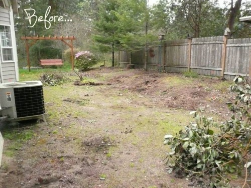 before and after garden makeover