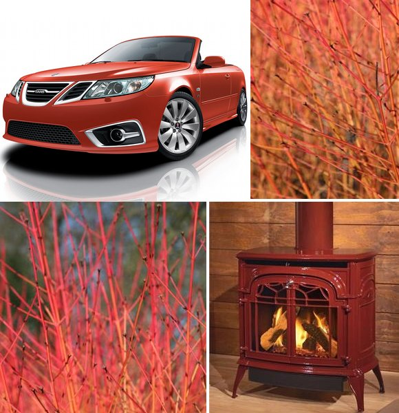 red saab, red stove, winter flame dogwood www.pithandvigor.com
