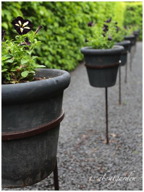 Alchemist's garden black garden by about gardens via www.pithandvigor.com