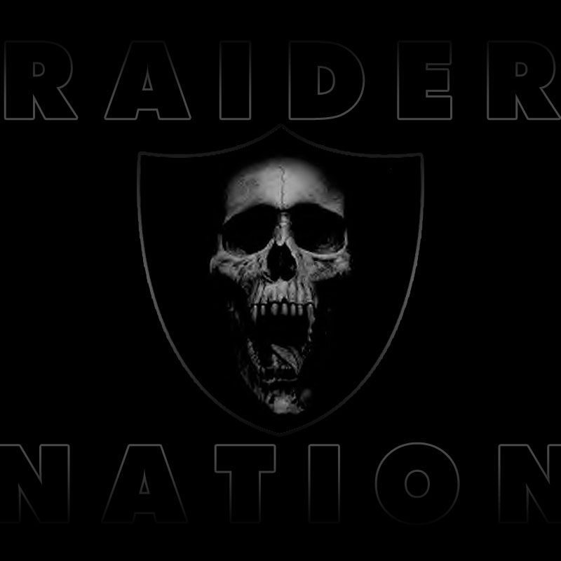 10 Top Free Raiders Wallpaper Screensavers Full Hd 1080p For Pc