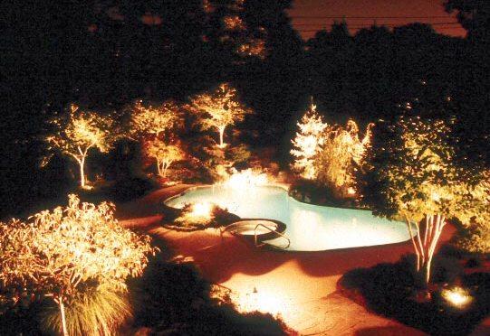 Iluminación de piscina y arbustos