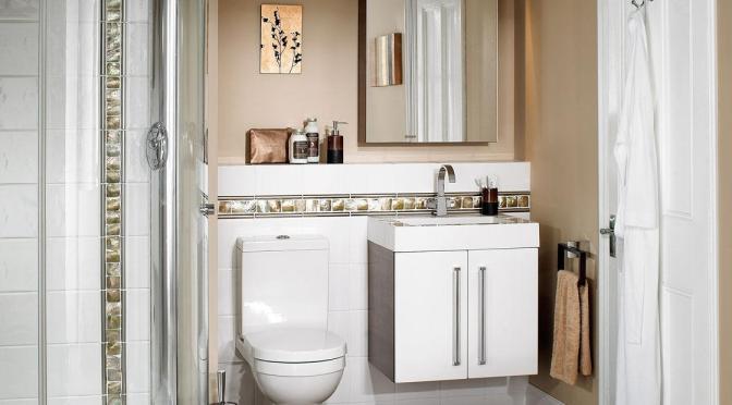 baños esteticos