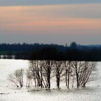 Flood Zones