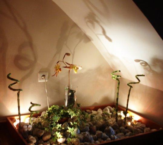Baño Con Jardin Interior: decorativa para redecorar tu casa, un jardín bajo la escalera