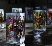 ICED-FLOWERS-1