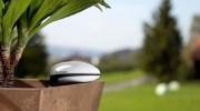Cuida tu planta con Koubachi