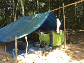 Dans la forêt amazonienne