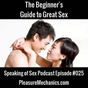 Beginner's Guide to Great Sex