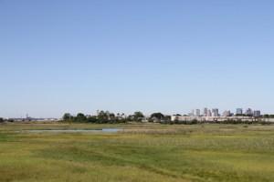 Belle Island Salt Marsh