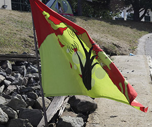 Marsh Radio Island Flag