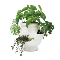 Small Crop Of Gifts For Gardeners