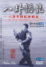 How Bagua Is Done