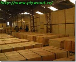 Plywood workshop