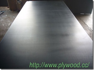 Export Big Size Film Faced Plywood