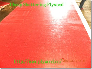 Cheap-Shuttering-Plywood-2
