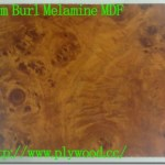 Elm Burl – Color and Grain of Melamine MDF
