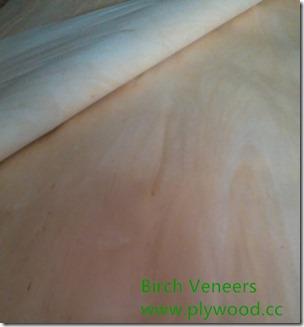 Birch Veneers