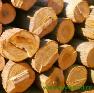 Malaysian hardwood