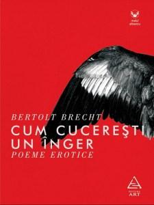 bookpic-5-cum-cuceresti-un-inger-poeme-erotice-6748