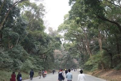 Meiji Shrine Park tokyo japan