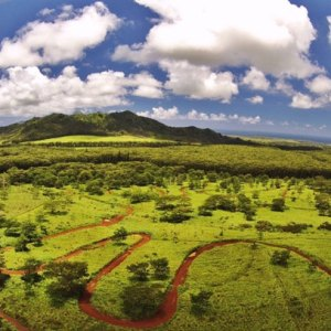Ultimate Hawaiian Trail Run course Kauai