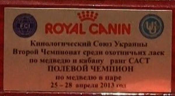 Royal_Canin_Pokale Contest Champion