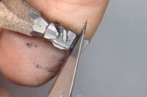 Video – WALL-E aus einem Bleistift gespitzt