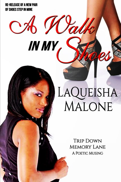 A Walk in My Shoes book cover