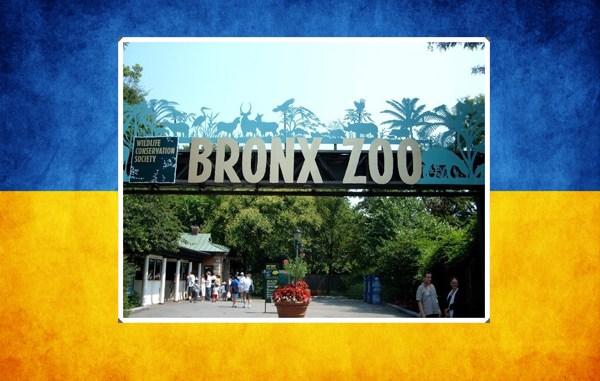 Ukriane_Ledger_Zoo