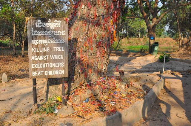 Killing Tree at the Killing Fields in Cambodia