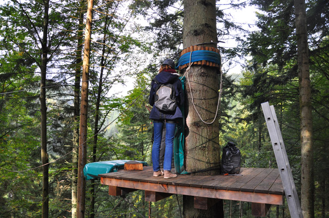 Black Forest Ziplines
