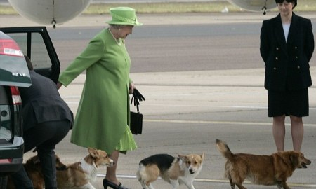 The Queen arrived from Canada and departed for Scotland accompanied by her corgis. picture Russell Clisby.