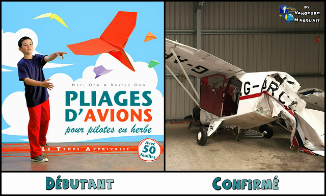 HUMOUR: Faites confiance au professionnels de l'aérien