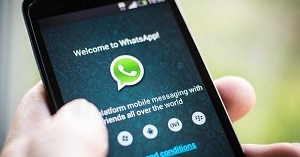3581b4c7-b53c-4986-9828-9bdb69ca308a_whatsapp