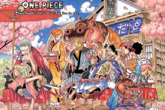 one-piece-802-cover2
