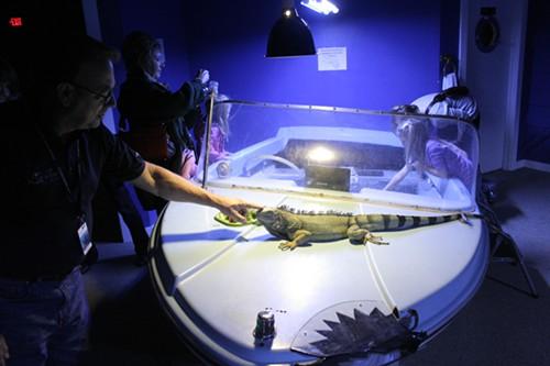 Portland Oregon Aquarium Jobs