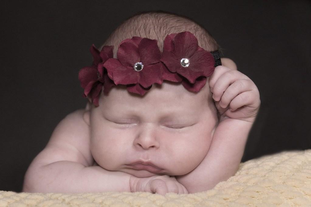 Newborn Portrait - Ferndale, Michigan - Oakland County